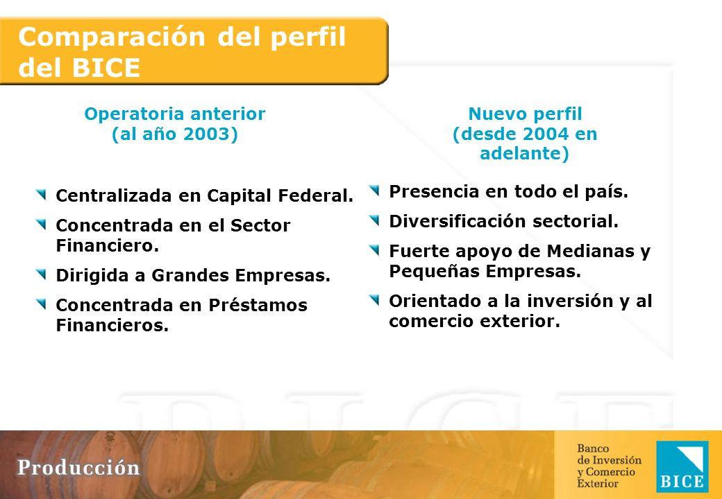 Nuevo Perfil Nuestra cartera en situación 1 es del 99,8% (al 30/06/07).