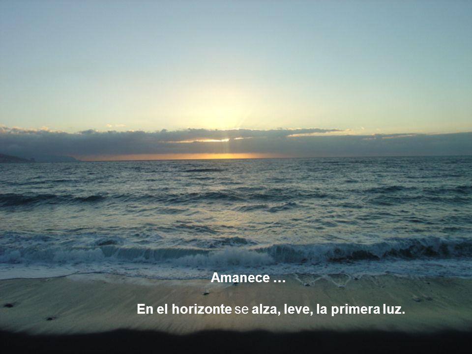 Amanece … En el horizonte se alza, leve, la primera luz.