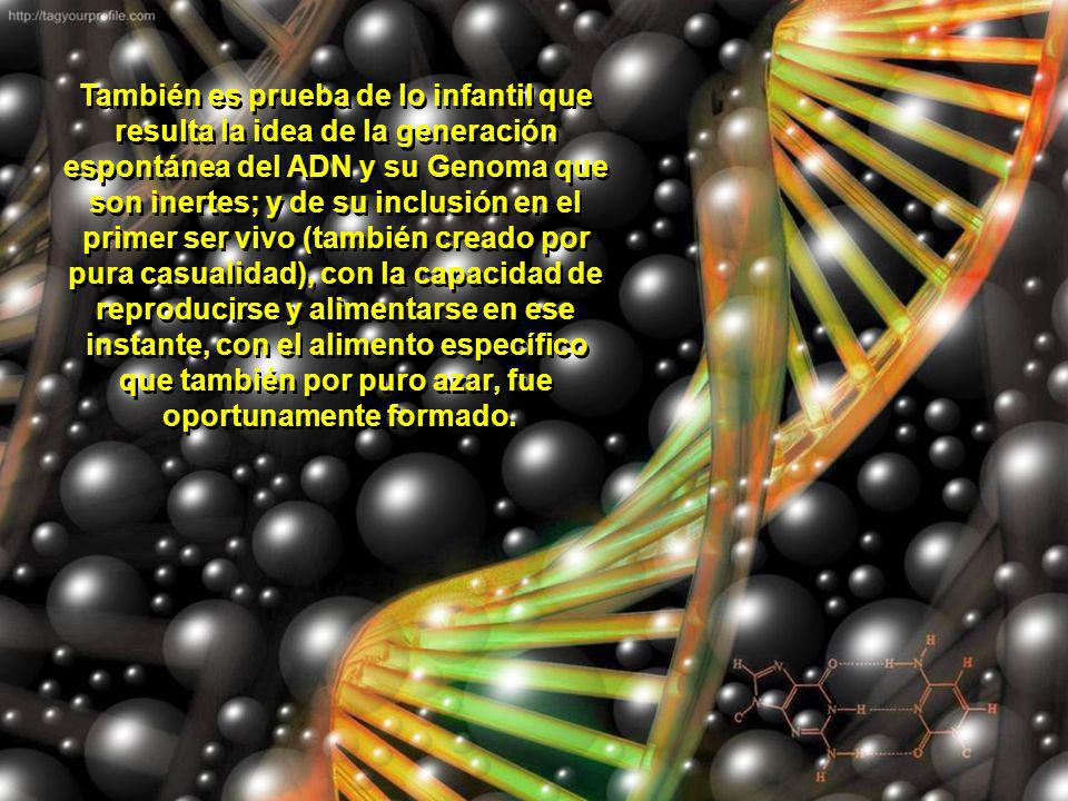 Todo esto comprueba que la enorme información contenida en el genoma, no pudo ser producto de sucesos al azar; ni de cambios espontáneos, necesarios y