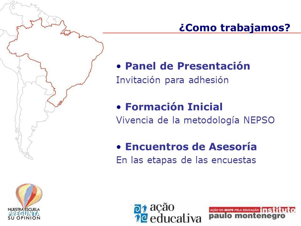Panel de Presentación Invitación para adhesión Formación Inicial Vivencia de la metodología NEPSO Encuentros de Asesoría En las etapas de las encuesta