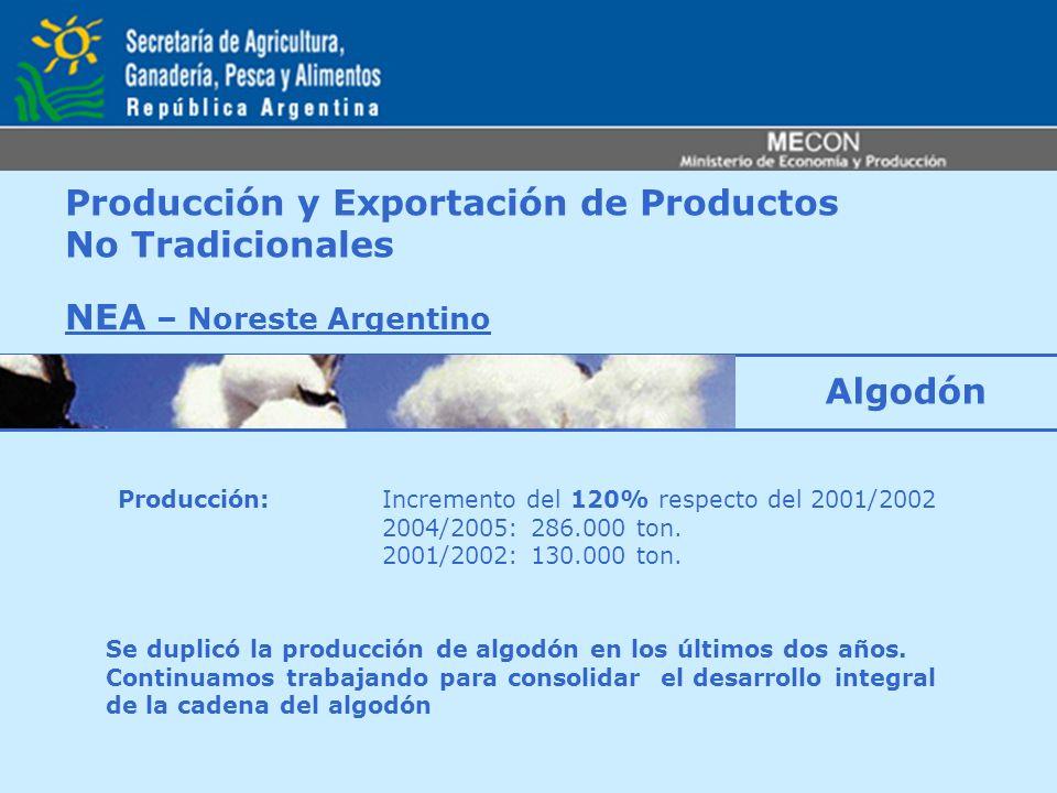 Producción y Exportación de Productos No Tradicionales NEA – Noreste Argentino Producción: Incremento del 120% respecto del 2001/2002 2004/2005: 286.0