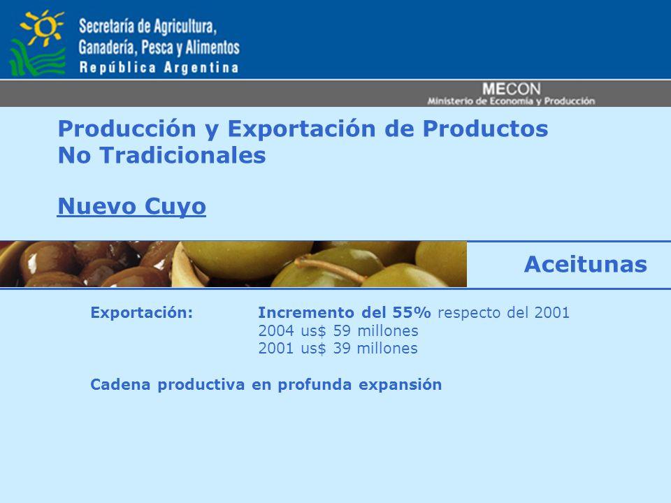 Producción y Exportación de Productos No Tradicionales Nuevo Cuyo Exportación: Incremento del 55% respecto del 2001 2004 us$ 59 millones 2001 us$ 39 m