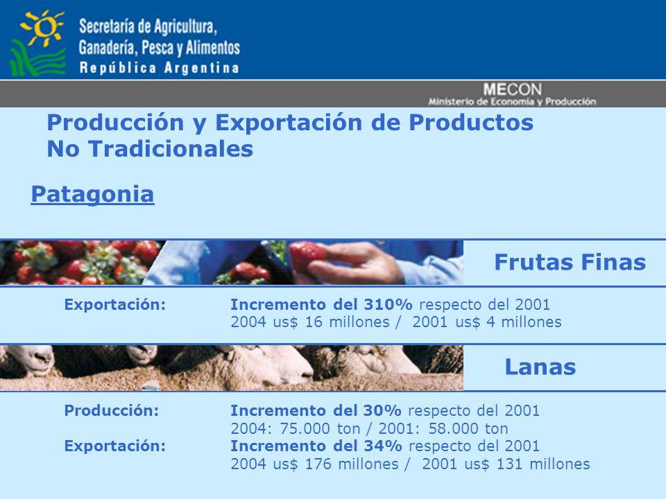 Producción y Exportación de Productos No Tradicionales Patagonia Exportación: Incremento del 310% respecto del 2001 2004 us$ 16 millones / 2001 us$ 4