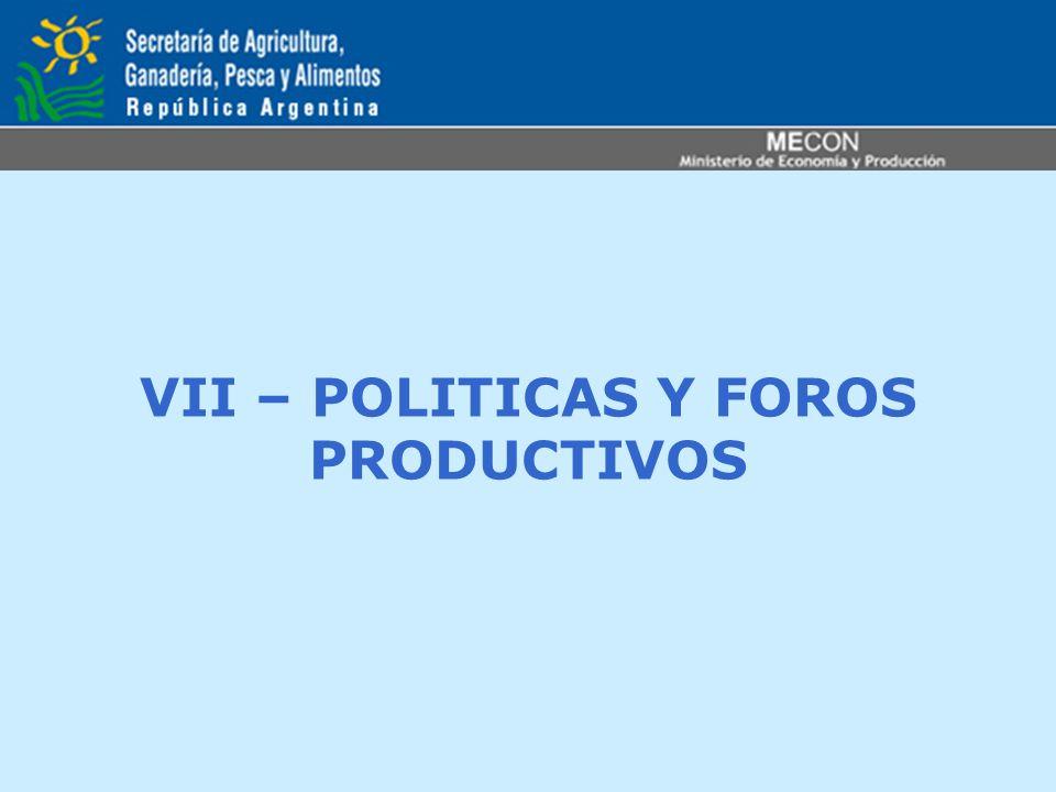 VII – POLITICAS Y FOROS PRODUCTIVOS