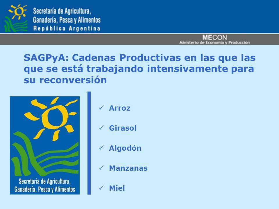 SAGPyA: Cadenas Productivas en las que las que se está trabajando intensivamente para su reconversión Arroz Girasol Algodón Manzanas Miel