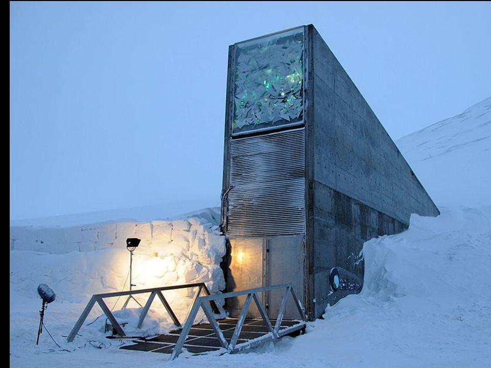 La Svalbard International Seed Vault (SISV), también conocida como la