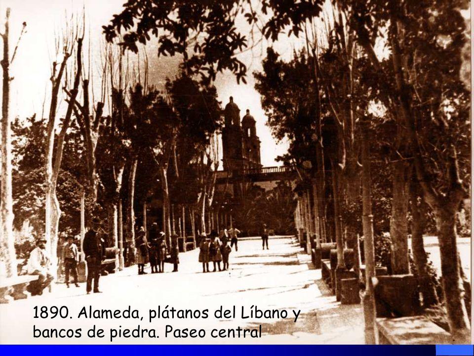 La estructura de la Alameda es rectangular (120 pasos de largo) y estaba dividida en cinco avenidas que concluían en un espacio central donde se erigí
