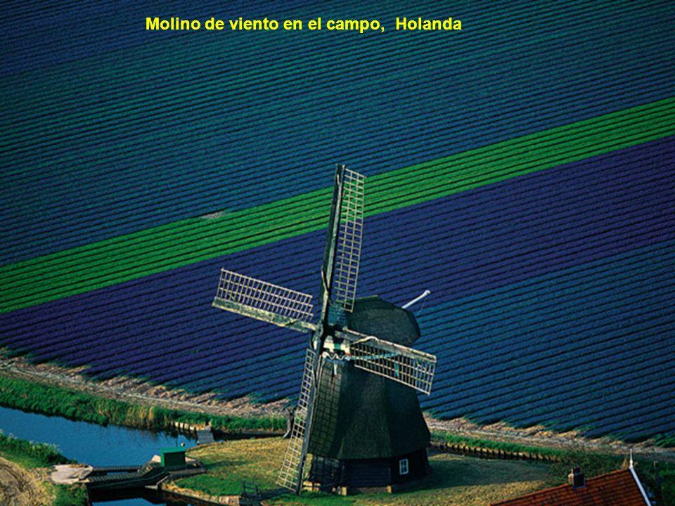 Campo de tupilpanes en Amsterdam, Holanda