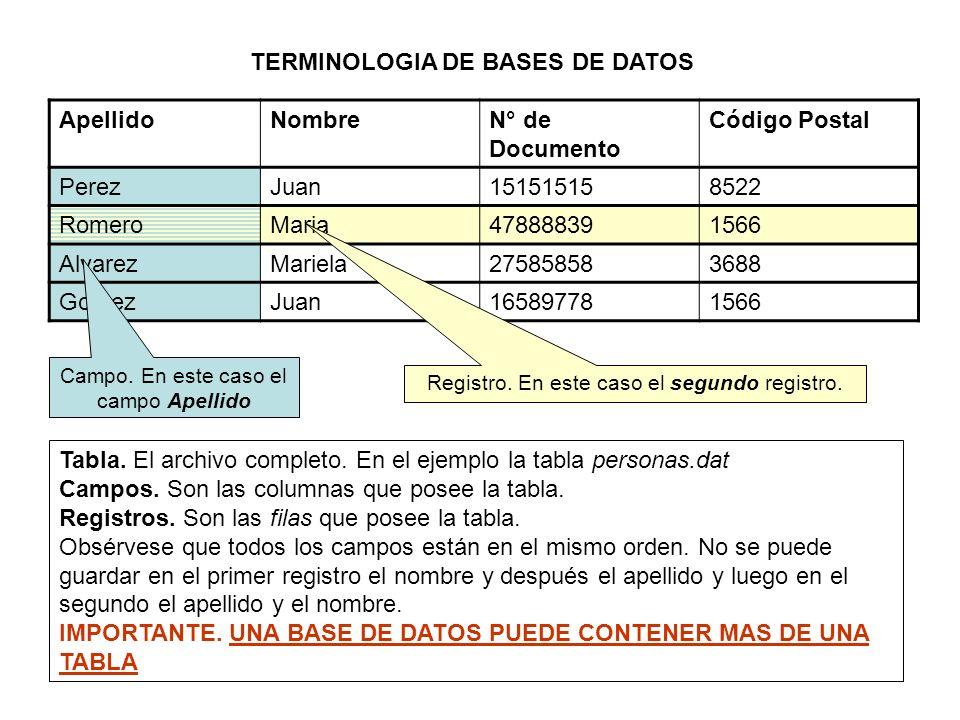 TERMINOLOGIA DE BASES DE DATOS ApellidoNombreN° de Documento Código Postal PerezJuan151515158522 RomeroMaria478888391566 AlvarezMariela275858583688 GomezJuan165897781566 Tabla.