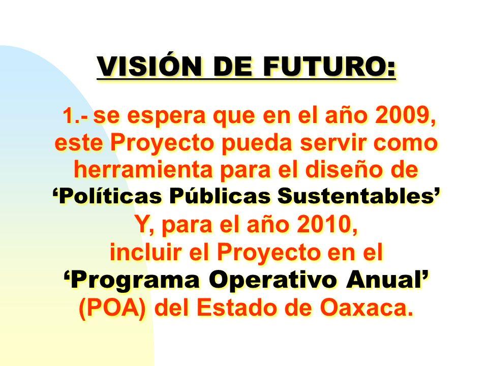 VISIÓN DE FUTURO: 1.- se espera que en el año 2009, este Proyecto pueda servir como herramienta para el diseño de Políticas Públicas Sustentables Y, p