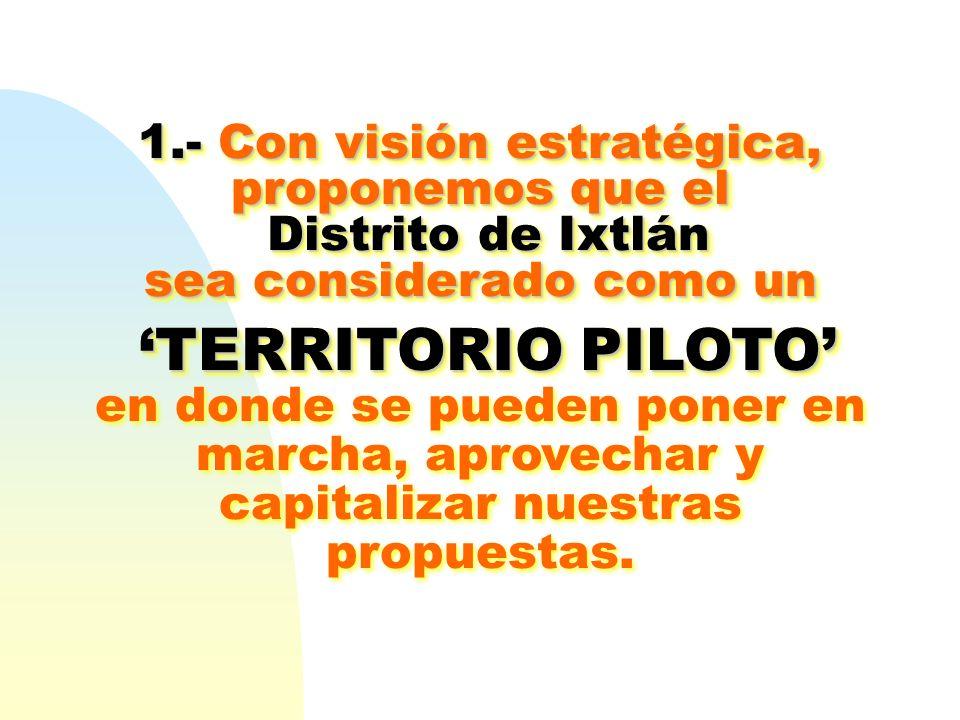 1.- Con visión estratégica, proponemos que el Distrito de Ixtlán Distrito de Ixtlán sea considerado como un TERRITORIO PILOTOTERRITORIO PILOTO en dond