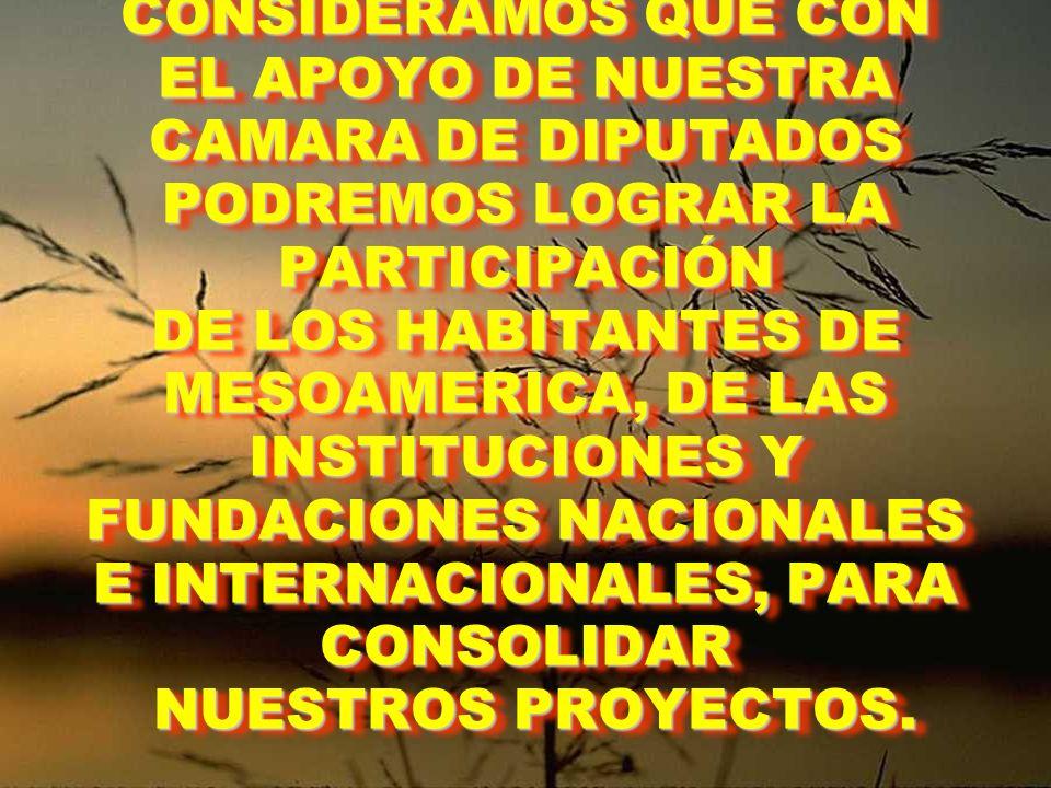CONSIDERAMOS QUE CON EL APOYO DE NUESTRA CAMARA DE DIPUTADOS PODREMOS LOGRAR LA PARTICIPACIÓN DE LOS HABITANTES DE MESOAMERICA, DE LAS INSTITUCIONES Y