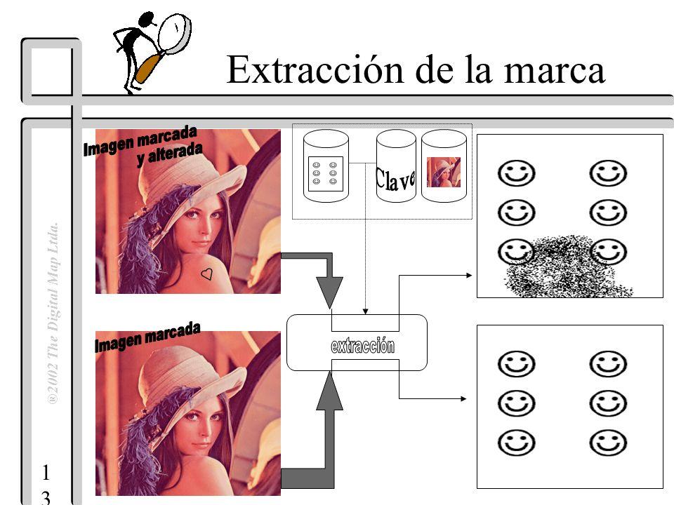 1313 ®2002 The Digital Map Ltda. Extracción de la marca
