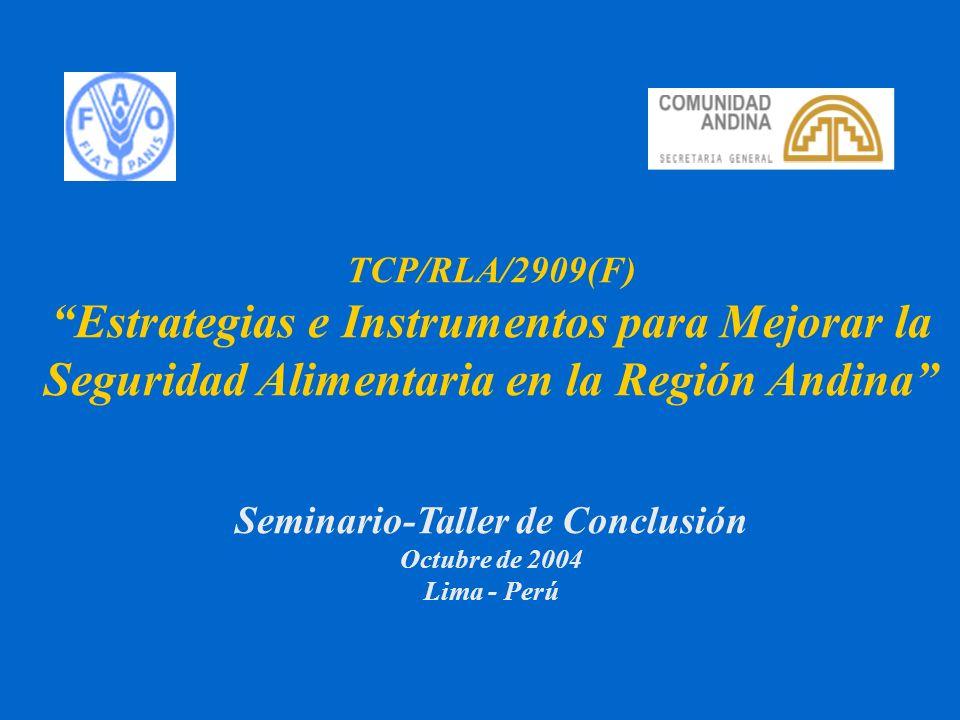 2 Estrategias e Instrumentos para Mejorar la Seguridad Alimentaria en la Región Andina FAO - CAN Seminario-Taller de Conclusión Octubre de 2004 Lima - Perú TCP/RLA/2909(F)