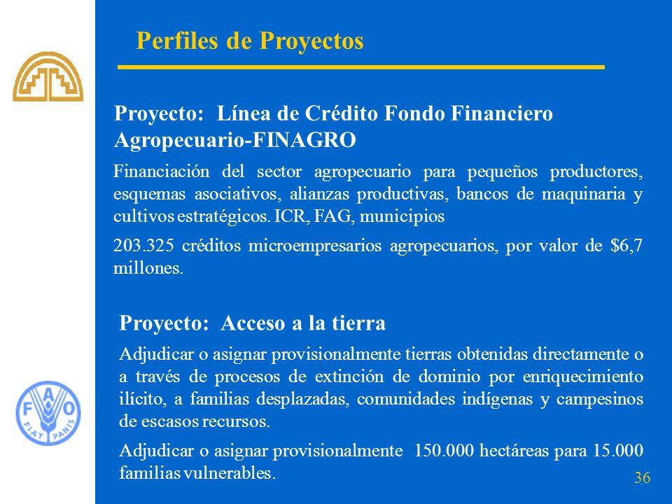 36 Perfiles de Proyectos Proyecto: Línea de Crédito Fondo Financiero Agropecuario-FINAGRO Financiación del sector agropecuario para pequeños productor