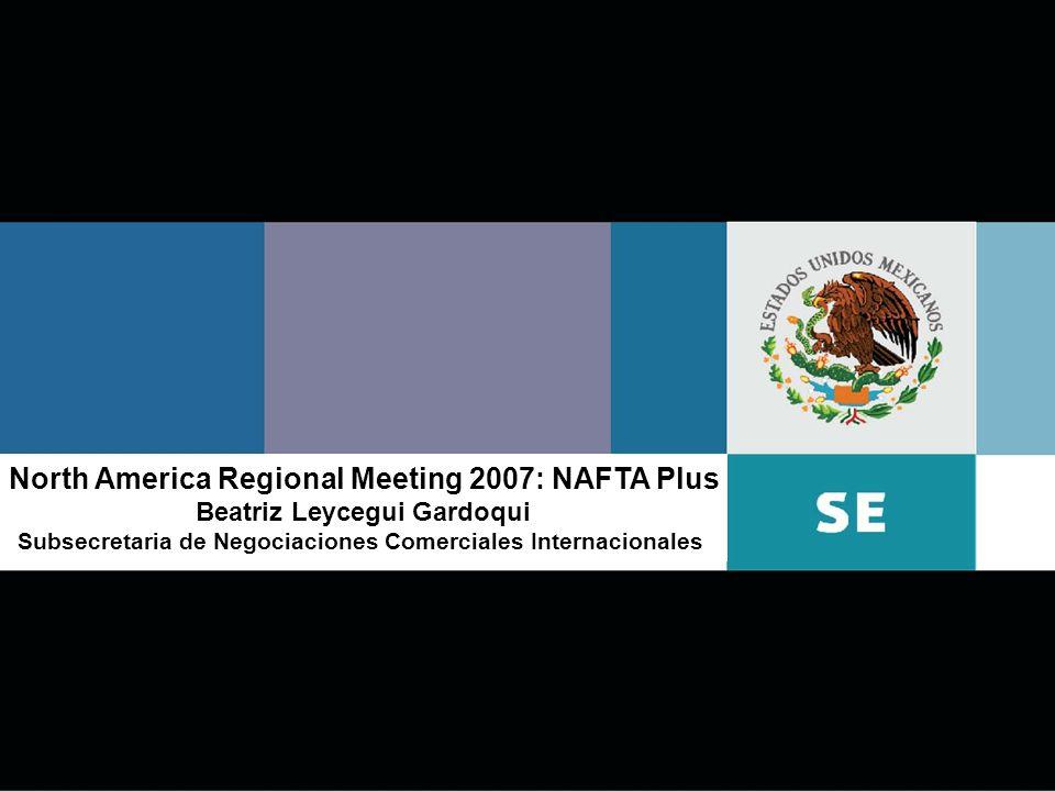 1 North America Regional Meeting 2007: NAFTA Plus Beatriz Leycegui Gardoqui Subsecretaria de Negociaciones Comerciales Internacionales