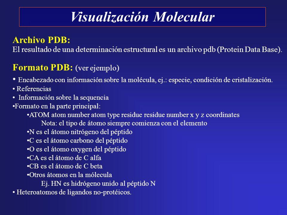 Visualización Molecular Archivo PDB: El resultado de una determinación estructural es un archivo pdb (Protein Data Base). Formato PDB: (ver ejemplo) E