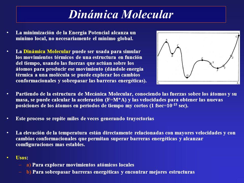 La minimización de la Energía Potencial alcanza un mínimo local, no necesariamente el mínimo global. La Dinámica Molecular puede ser usada para simula