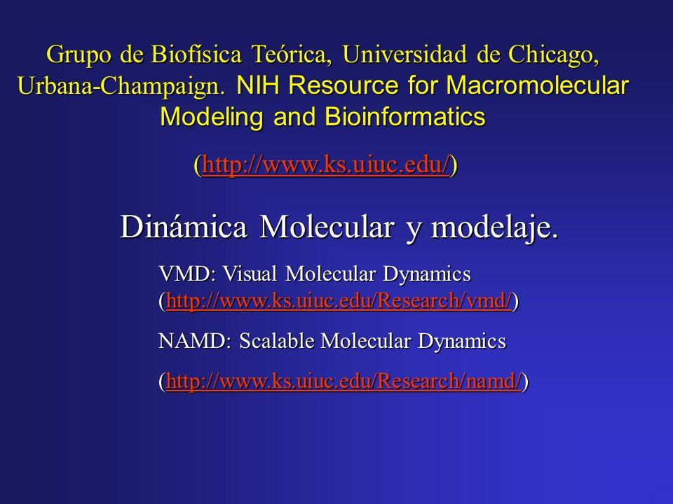 Dinámica Molecular y modelaje. VMD: Visual Molecular Dynamics (http://www.ks.uiuc.edu/Research/vmd/) http://www.ks.uiuc.edu/Research/vmd/ NAMD: Scalab