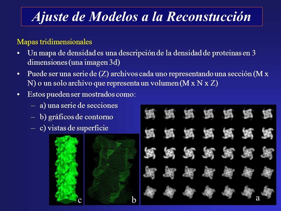 Mapas tridimensionales Un mapa de densidad es una descripción de la densidad de proteinas en 3 dimensiones (una imagen 3d) Puede ser una serie de (Z)