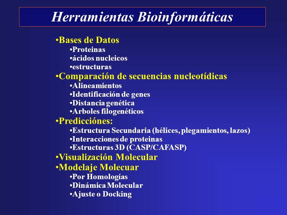 Herramientas Bioinformáticas Bases de Datos Proteinas ácidos nucleicos estructuras Comparación de secuencias nucleotídicas Alineamientos Identificació