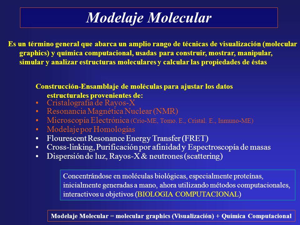 Modelaje Molecular Construcción-Ensamblaje de moléculas para ajustar los datos estructurales provenientes de: Cristalografía de Rayos-X Resonancia Mag