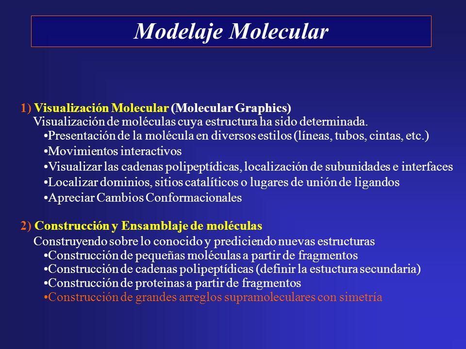 1) Visualización Molecular (Molecular Graphics) Visualización de moléculas cuya estructura ha sido determinada. Presentación de la molécula en diverso
