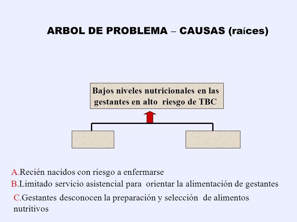 ARBOL DE PROBLEMA – CAUSAS (ra í ces) PROBLEMA PRINCIPAL (amontonamiento de RS) CAUSAS EFECTO