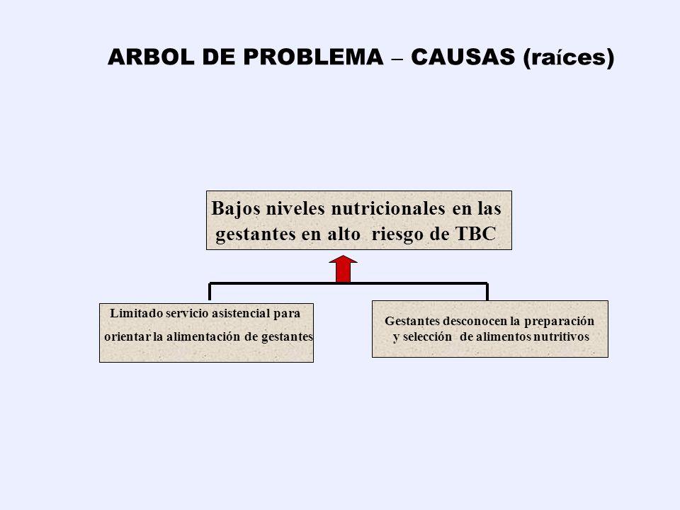 ARBOL DE PROBLEMA – CAUSAS (ra í ces) Bajos niveles nutricionales en las gestantes en alto riesgo de TBC B.Limitado servicio asistencial para orientar