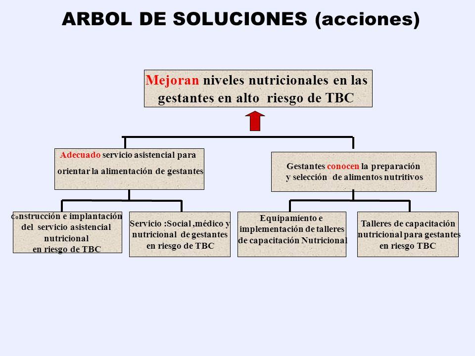 ARBOL DE SOLUCIONES (acciones) Mejoran niveles nutricionales en las gestantes en alto riesgo de TBC Adecuado servicio asistencial para orientar la ali