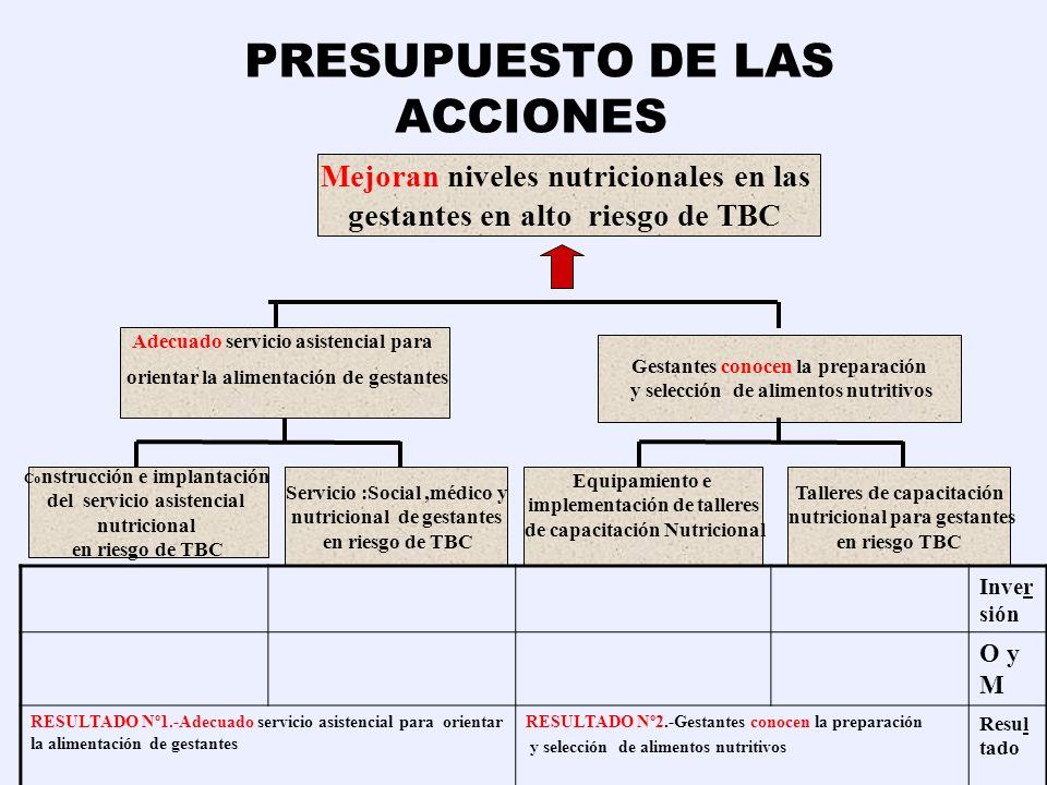 EGRESOS ( Costos de Operación y Mantenimiento ) Inversiones ETAPA OPERACIONALETAPA PRE- OPERACIONAL ETAPA OPERACIONAL