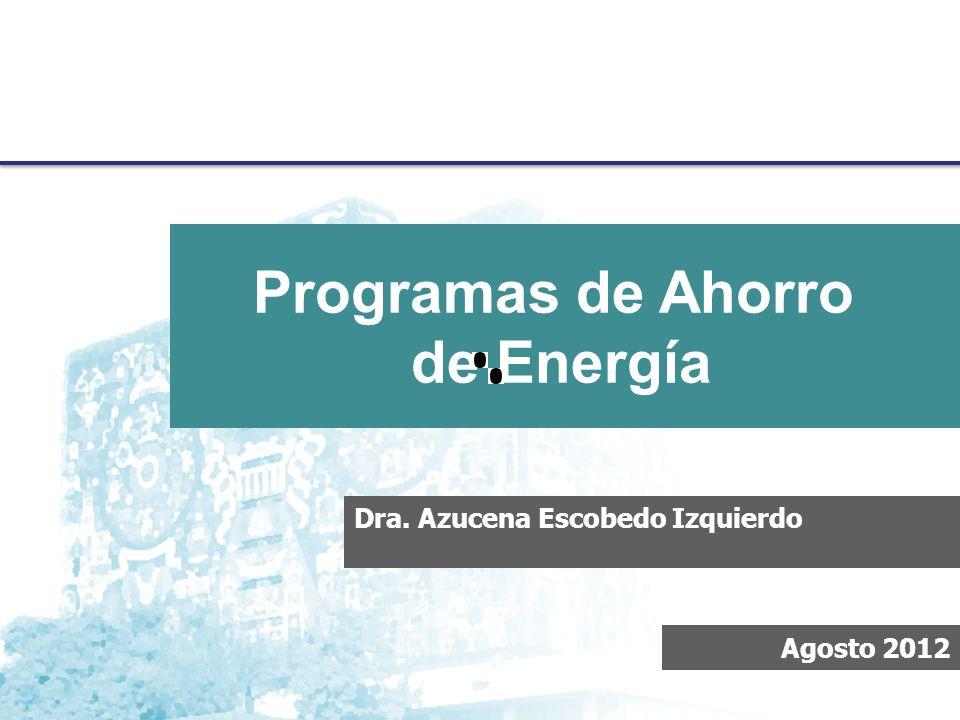 Metodología para Diagnósticos Energéticos, Proyecto PAPIIT Dra.