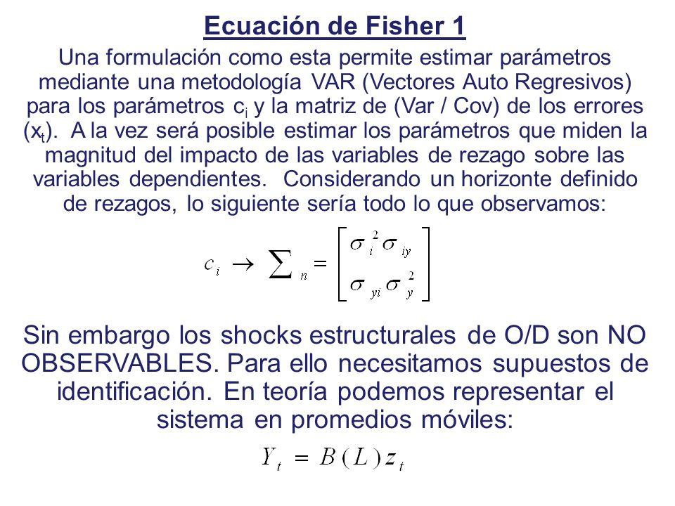 Ecuación de Fisher 1 Una formulación como esta permite estimar parámetros mediante una metodología VAR (Vectores Auto Regresivos) para los parámetros