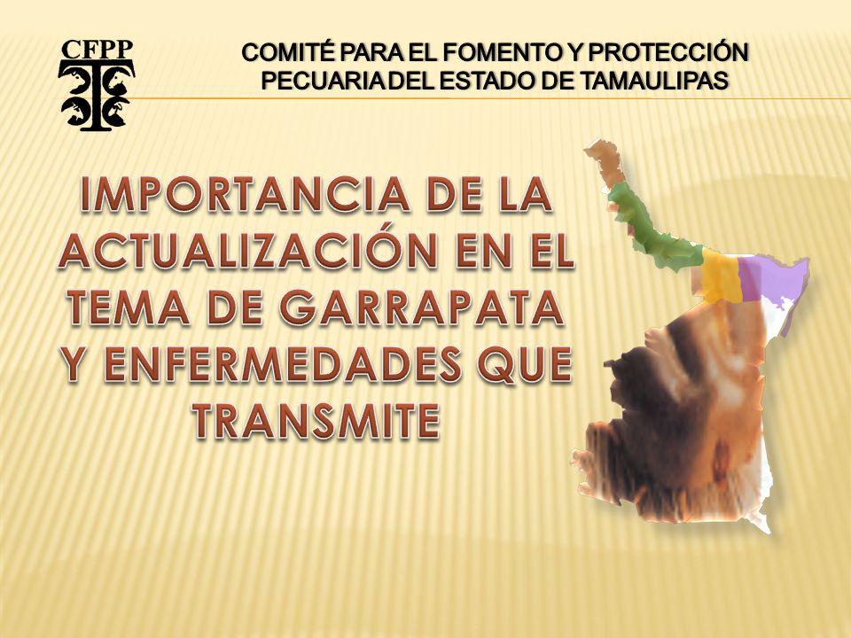 Tratamiento Garrapaticida Exclusivo Para Ganado de Exportación NOTA: 1.