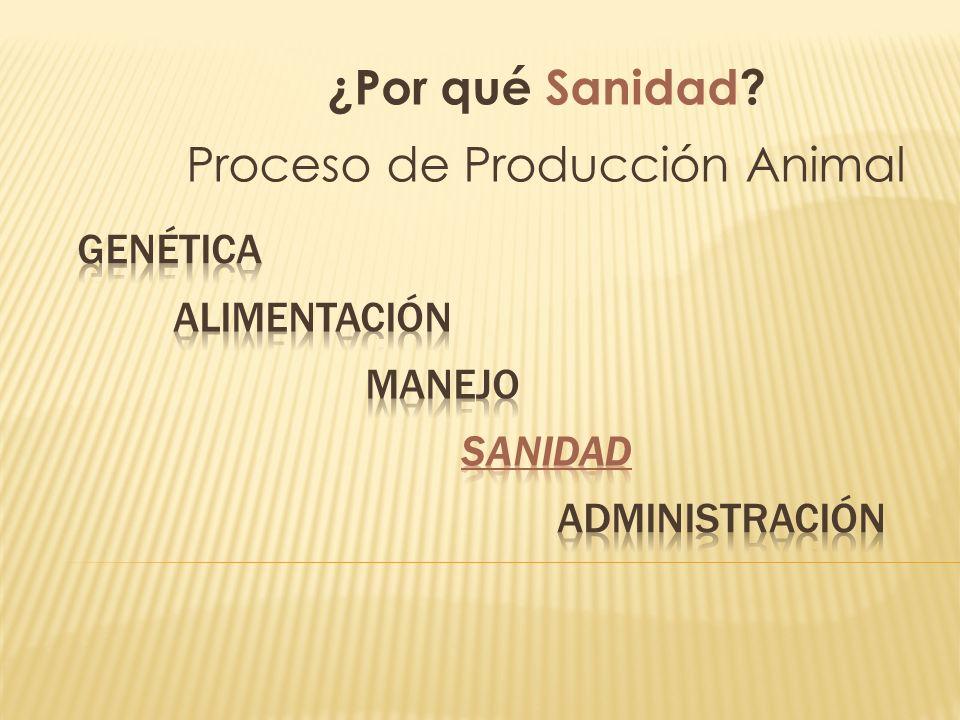 ¿Por qué Sanidad? Proceso de Producción Animal