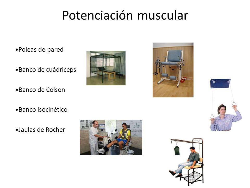 Potenciación muscular Poleas de pared Banco de cuádriceps Banco de Colson Banco isocinético Jaulas de Rocher