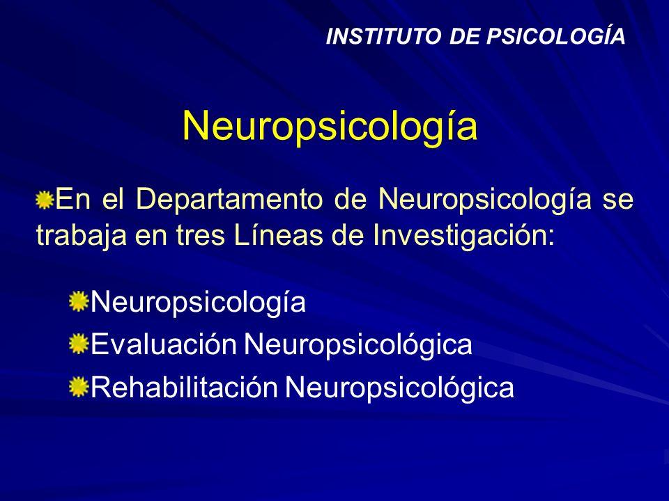 Neuropsicología En el Departamento de Neuropsicología se trabaja en tres Líneas de Investigación: Neuropsicología Evaluación Neuropsicológica Rehabili