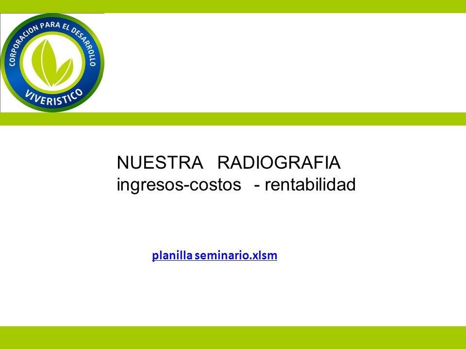 planilla seminario.xlsm NUESTRA RADIOGRAFIA ingresos-costos - rentabilidad