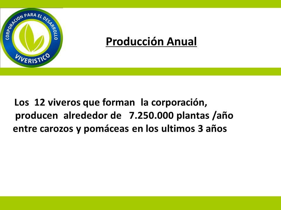 Los 12 viveros que forman la corporación, producen alrededor de 7.250.000 plantas /año entre carozos y pomáceas en los ultimos 3 años Producción Anual