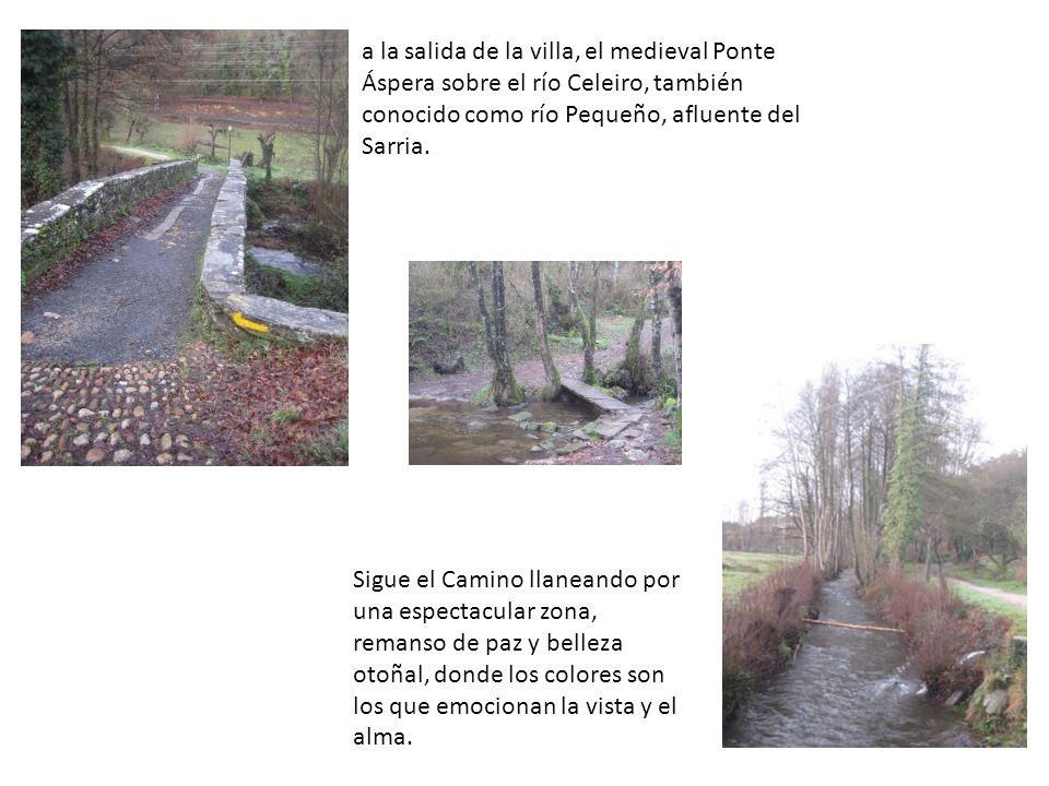 a la salida de la villa, el medieval Ponte Áspera sobre el río Celeiro, también conocido como río Pequeño, afluente del Sarria. Sigue el Camino llanea