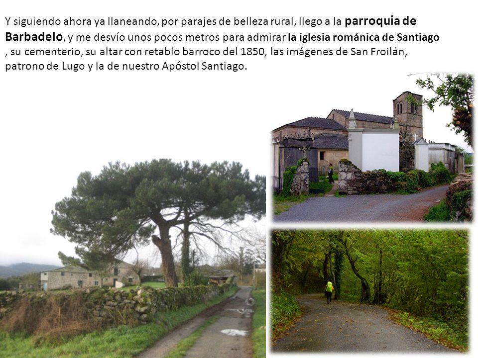Y siguiendo ahora ya llaneando, por parajes de belleza rural, llego a la parroquia de Barbadelo, y me desvío unos pocos metros para admirar la iglesia