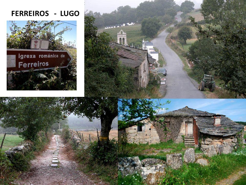 FERREIROS - LUGO