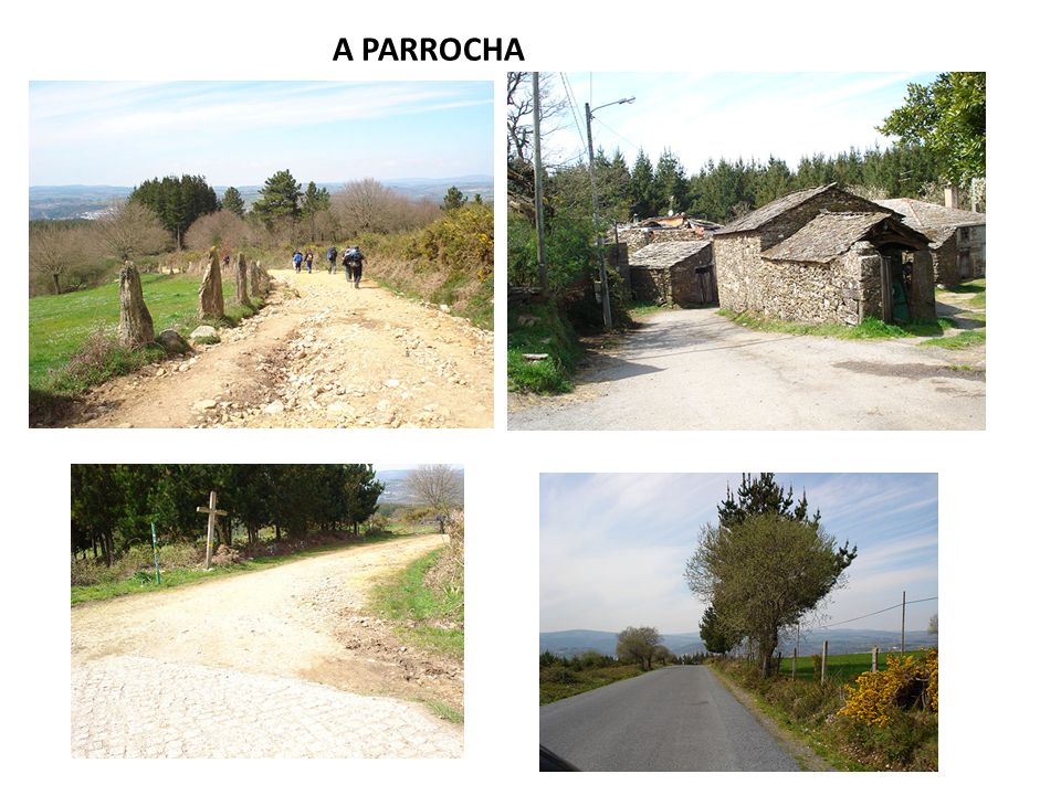 A PARROCHA