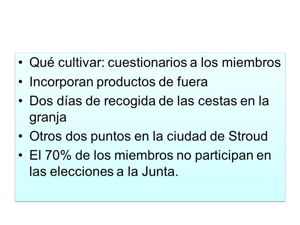 Qué cultivar: cuestionarios a los miembros Incorporan productos de fuera Dos días de recogida de las cestas en la granja Otros dos puntos en la ciudad de Stroud El 70% de los miembros no participan en las elecciones a la Junta.
