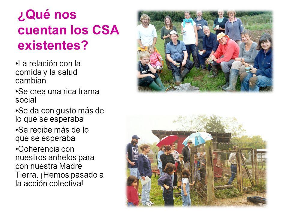 ¿Qué nos cuentan los CSA existentes.