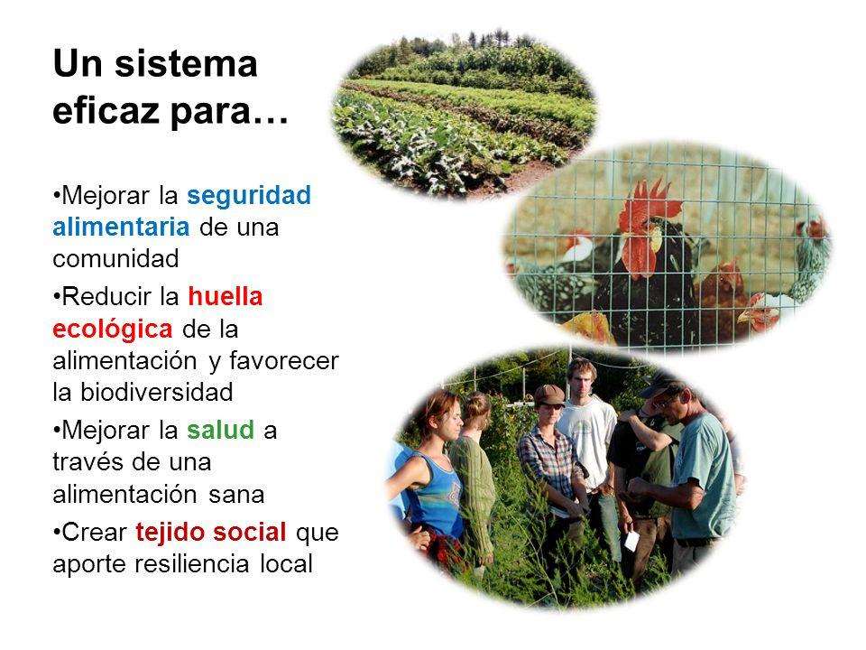 Un sistema eficaz para… Mejorar la seguridad alimentaria de una comunidad Reducir la huella ecológica de la alimentación y favorecer la biodiversidad Mejorar la salud a través de una alimentación sana Crear tejido social que aporte resiliencia local