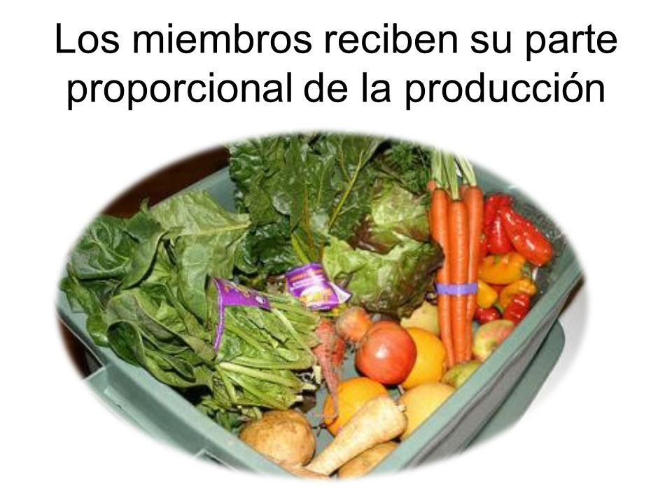 Los miembros reciben su parte proporcional de la producción