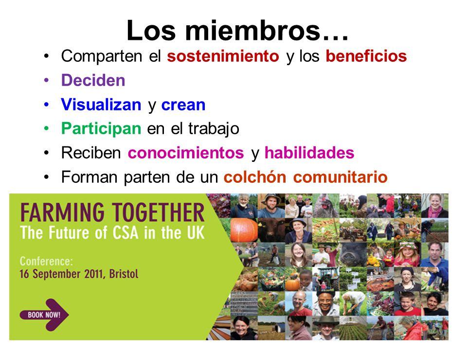 Los miembros… Comparten el sostenimiento y los beneficios Deciden Visualizan y crean Participan en el trabajo Reciben conocimientos y habilidades Forman parten de un colchón comunitario