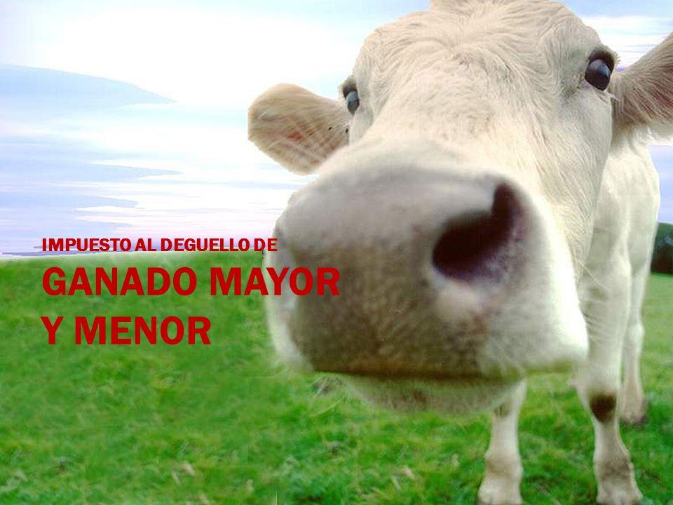 IMPUESTO AL DEGUELLO DE GANADO MAYOR Y MENOR