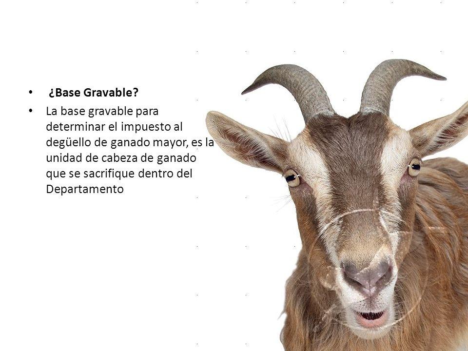 ¿Base Gravable? La base gravable para determinar el impuesto al degüello de ganado mayor, es la unidad de cabeza de ganado que se sacrifique dentro de